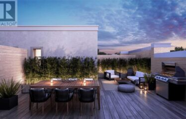 Modern 3 Bedroom with Rooftop Terrace